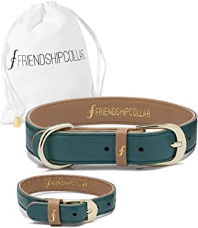 FriendshipCollar Dog or Cat Collar and Matching Bracelet Set - The Classic Pup - Water & Scratch Resistant!