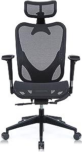 Mesh3 Waltz High Back Ergonomic Swivel Desk Computer Mesh Chair, Adjustable 4D Armrests Backrest and Headrest for Work from Home Office Conference Room Mesh Seat BIFMA Certified Black Color