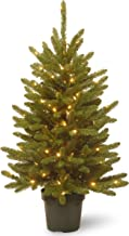 National Tree 4 Foot Kensington Tree with 100 Clear Lights in Green Growers Pot (KNT3-307-40)