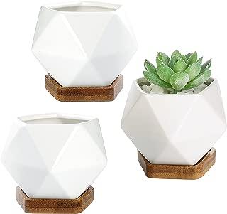 Best hexagonal wooden planter large Reviews
