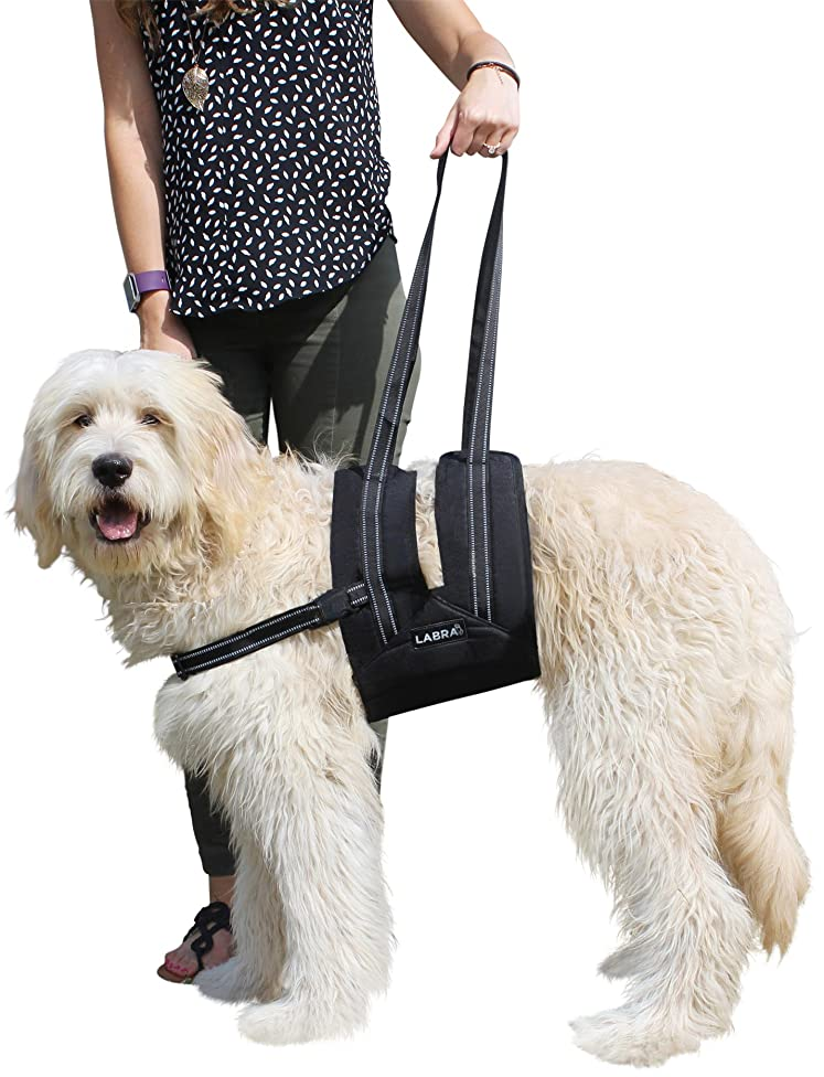 Labra Veterinarian Approved Dog Canine K9 Sling Assist with Chest Strap Adjustable Reflective Straps Support Harness Helps with Loss of Stability Joint Injuries Arthritis ACL Rehabilitation Rehab