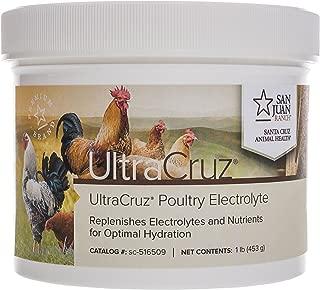 UltraCruz Poultry Electrolyte Supplement, 1 lb, Powder