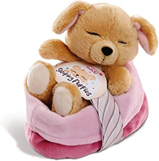 NICI- Cachorros dormilones Perro en cesto Rosa-Lila, 12cm (45371)