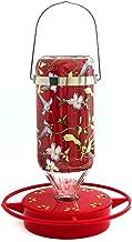 Hummers Galore®, Hummingbird Feeder, Hanging Vine Design, Glass, 32 Oz