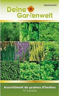 Lot de 10 Sachets de Graines de Plantes Aromatiques à Planter | Potager extérieur ou jardin intérieur | Menthe poivrée, ba...