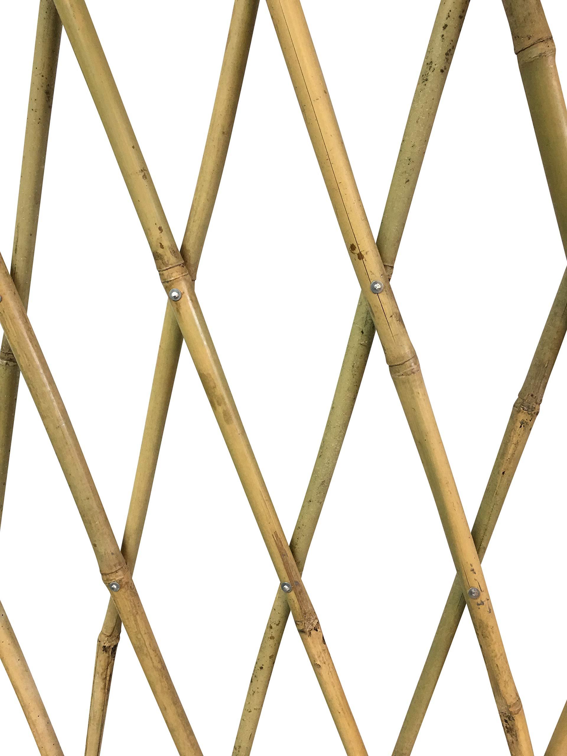 MGP Expandable Bamboo 72L x 12 H Trellis with Aluminum Rivets