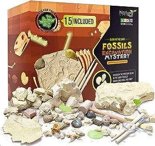 Best gemstone excavation kit Reviews