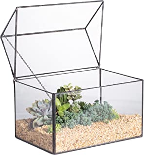 NCYP Glass Geometric Terrarium Container Tabletop Large Close House Shape Box Planter for Succulent Plant Moss Fern with Swing Lid Black Decor 8.6 x 7.25 x 6 inches