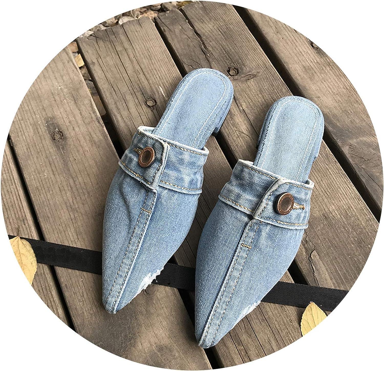 Women Pointed Toe shoes Flats Jeans Slippers Female Slides Designer Slippers,Sky bluee,37