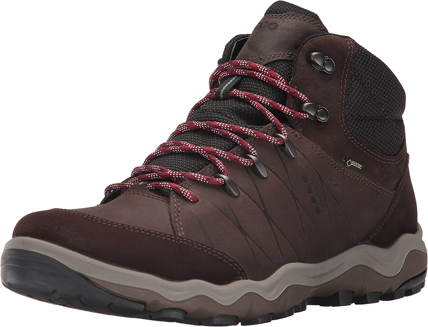 ECCO Men's Ulterra High Gore-Tex Backpacking Boot