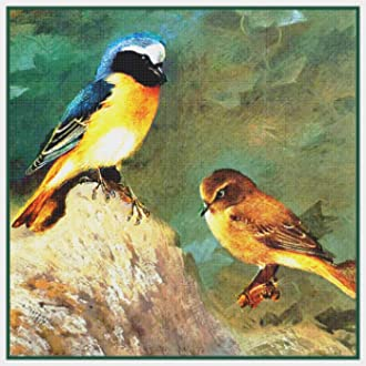 Naturalist Archibald Thorburn Pair of Sparrows Bird Counted Cross Stitch Pattern