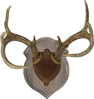 Walnut Hollow Country Deluxe Antler Mount Kit, Solid Pine Rustic Barn Board Finish