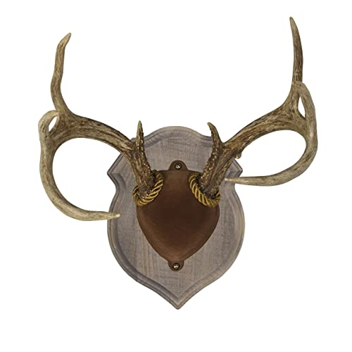 Deer Plaques Amazoncom