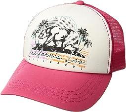 Billabong - Retro Bear Hat