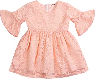 Baby Girls Lace Dress Little Princess Flower Lace Summer Party Wedding Ruffled Sleeve Dresses One-Piece Clothes
