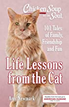 Chicken Soup for the Soul: Life Lessons from the Cat: 101 Tales of Family, Friendship and Fun