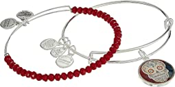 Alex and Ani - Art Infusion Calavera II Bracelet Set