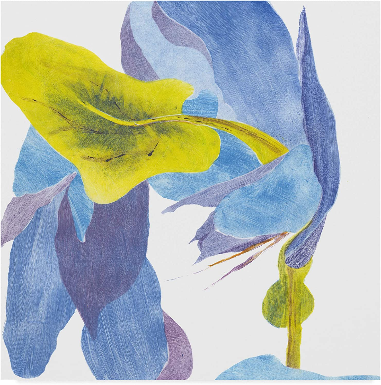 Trademark Fine Art Surprise Indigo Iii by Carolyn redh Magic Sky Art by Judith Dagostino, 12x19, 14x14