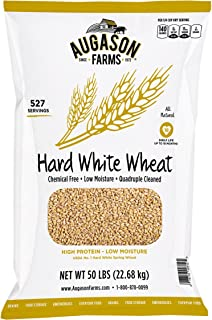 Augason Farms Hard White Wheat, 527 Servings, 18 Month Shelf Life, 50 Pound Bag