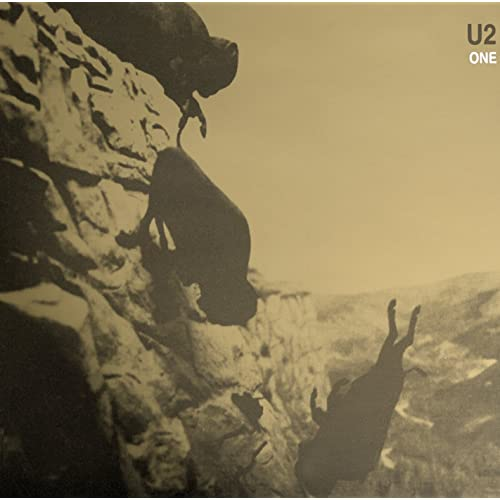 Image result for One U2 images