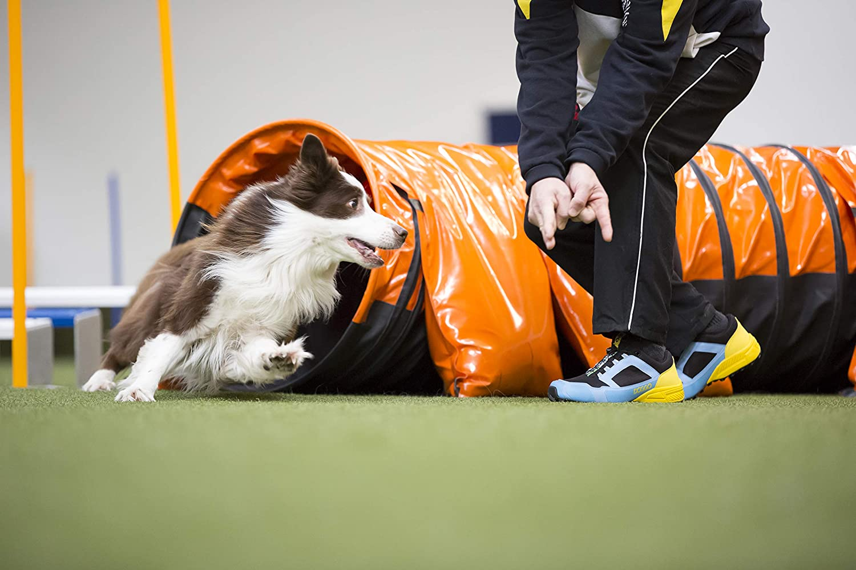 Scape per Sport Outdoor Unisex-Adulto DOGGO Parcours