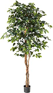 Nearly Natural 6ft. Ficus Artificial Trees, 72in, Green