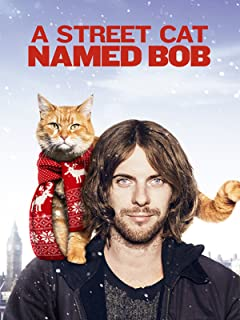 Best a street cat named bob real life Reviews