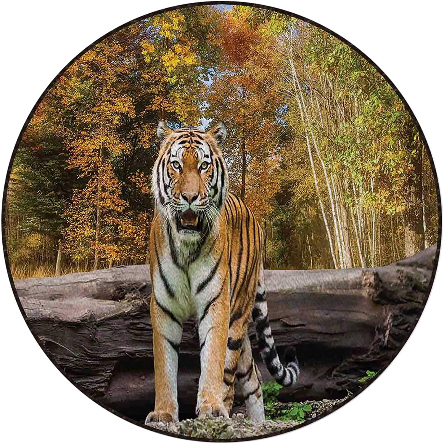 Tiger in Forest Office Swivel Chair Protector for Mat Floor Overseas parallel Sales of SALE items from new works import regular item Roll