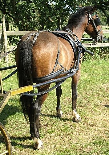Harnais Zilco Classic à un cheval - poney, Noisette, Z Grip avec arrêtoirs