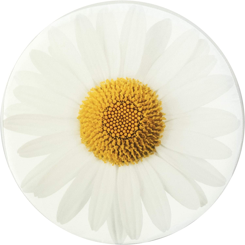 38 x 6 cm SANDINI Coj/ín Motivo de la Flor Decoraci/ón para hogar y jard/ín