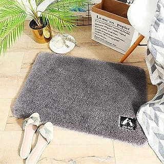 Bath Mat Rug, Absorbent Shaggy Bathroom Rugs, Shower mat, Non Slip Toilet Doormat Bath Rug for Bathroom Plush Carpet Runne...