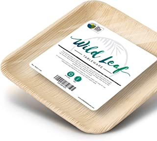 Disposable Palm Leaf Plates 25 Pack / 6 Inch. All Natural Compostable, Biodegradable and Eco Friendly Dessert Party Plates - Comparable to Bamboo or Wood - Great for Outdoor Parties, Weddings and BBQs