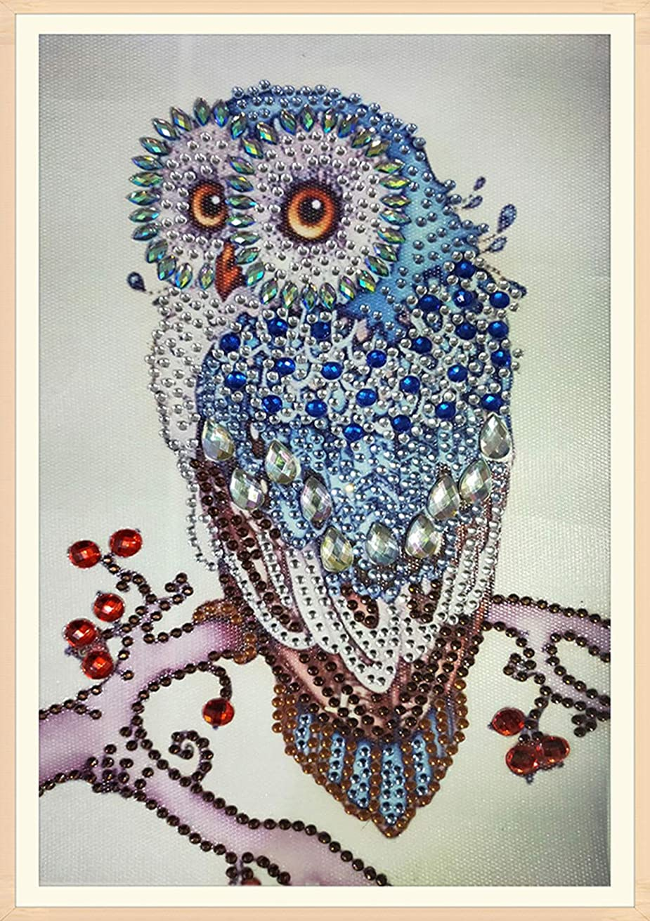 5D Diamond Painting Kits for Kids & Adult Cute Owl Cartoon Animal Diamond Oil Painting DIY Living Room Rhinestone Cross Stitch Arts Craft Supply for Home Wall Decor Ross Beauty