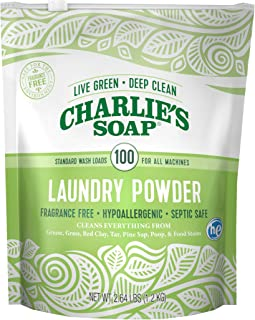 natural washing powder for babies