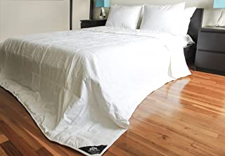 Triumph Hill 100% Mulberry Silk 100% Jacquard Cotton Case Heavy Weight Bed Comforter Standard/Twin Size 68x 96