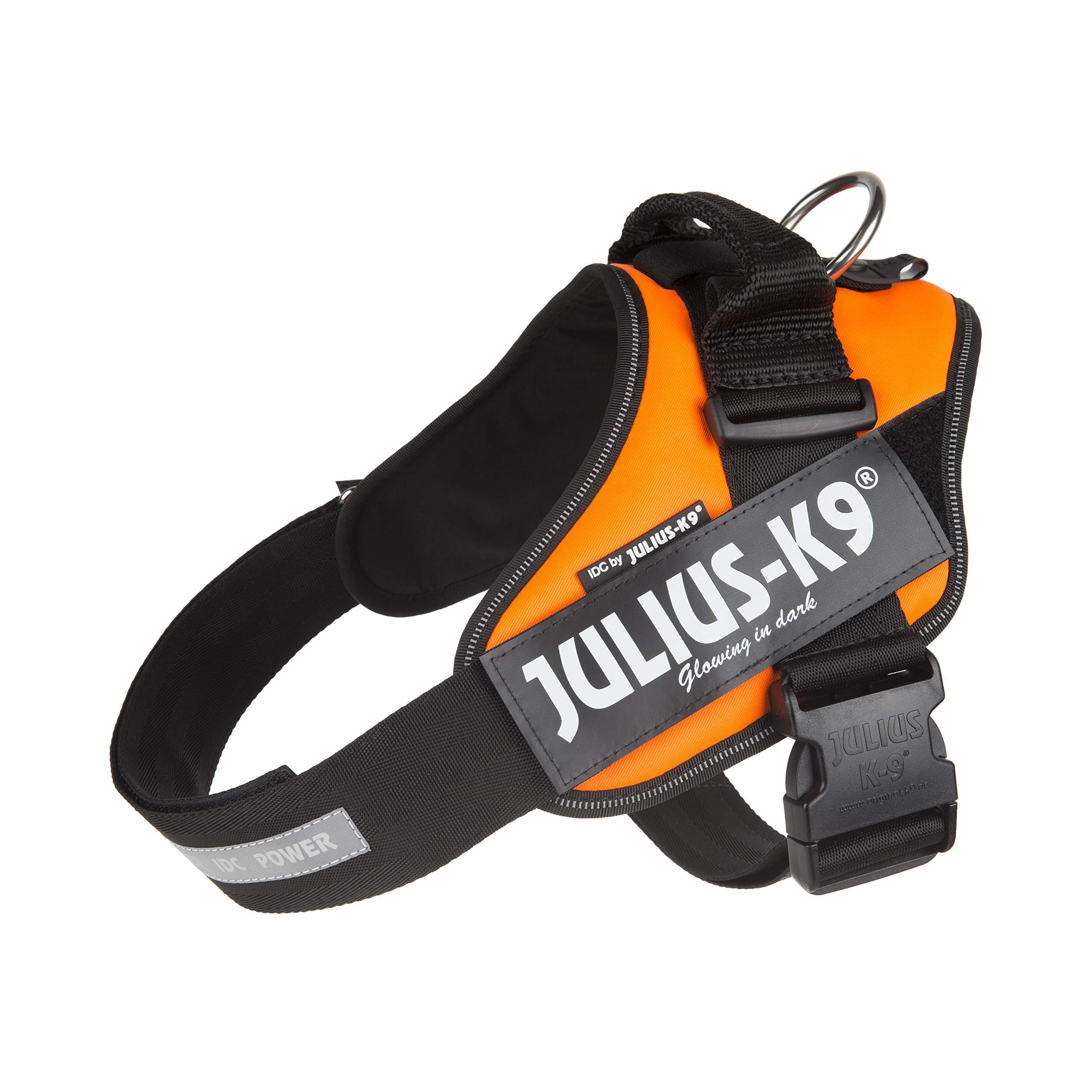 Julius-K9 IDC-Power Lumino Harnais pour Chien Orange Fluo Taille Baby 1