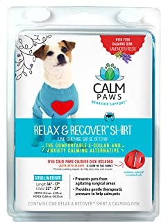 Calm Paws Recovery Shirt