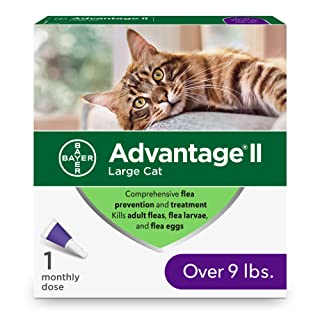 Bayer Animal Health Advantage II 2-Dose Flea Prevention and Treatment for Large Cats, Over 9 Pounds