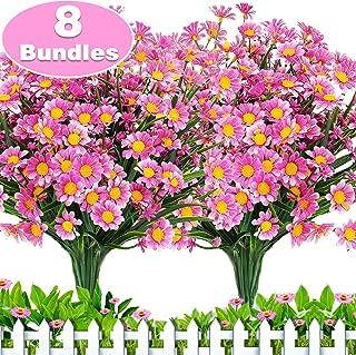 pink girasol