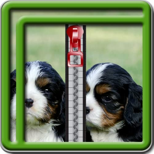 Puppy Lock Screen Zipper