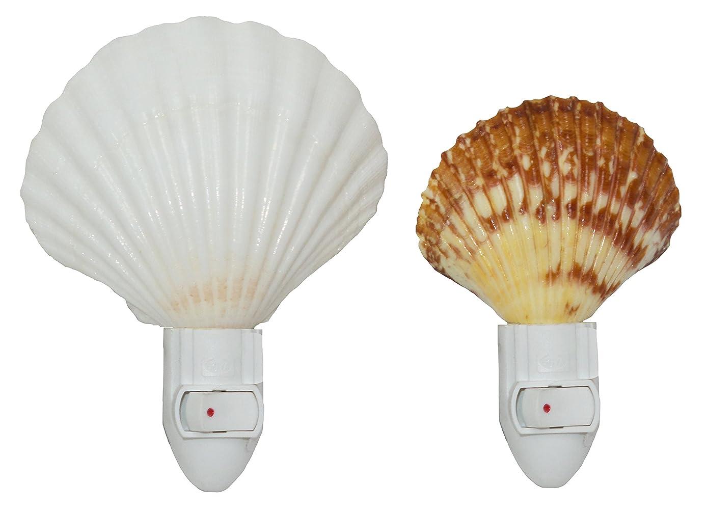 U.S. Shell Seashell Night Light Set of 2 (Irish Deep and Pecten)