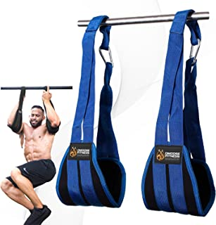 DMoose Fitness Hanging Ab Straps for Abdominal Muscle Building and Core Strength Training, Padded Pull Up Straps for Ab Wo...