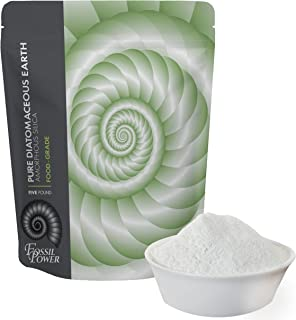 shell flour for humans