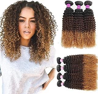 Mink Hair 3 Tone Ombre Color Kinky Curly Hair (10 12 14) 10A Grade Brazilian Virgin Human Hair Extension 1B/4/27# Kinky Curly Weave Hair Bundles 100g/pc