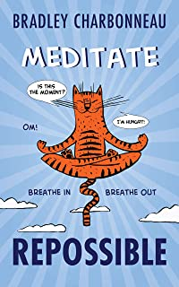Meditate: When you're ready to take your success to the next level (Repossible Book 7) (English Edition)