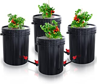 SavvyGrow DWC Hydroponics Growing System-Kit - Large 5 Gallon Bucket w/Air Pump, Airstone - Complete Hydroponic Setup for Indoor Tomatoes, Peppers, Melons, Beans - Grow Super Fast at Home (4 Bucket)