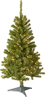 National Tree 4 Foot Canadian Fir Grande Wrapped Tree with 100 Clear Lights (CFG7-304-40)