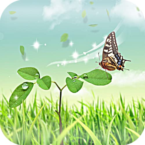 Butterfly In Greens Live HD Wallpaper