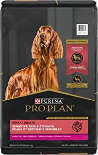 Purina Pro Plan Focus Sensitive Skin & Stomach Lamb & Oat Adult Dry Dog Food (Packaging May Vary)