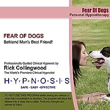 Fear of Dogs - Befriend Man's Best Friend